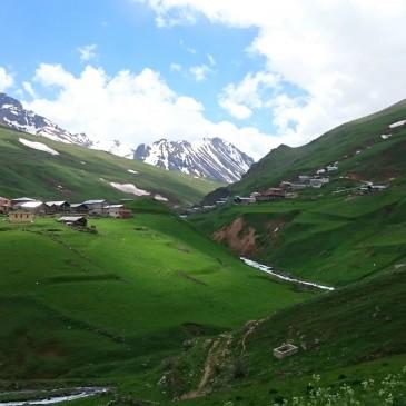 Anzer Ballıköyü Tarımsal Kallınma Kooperatifi
