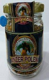 anzerpoleni-1