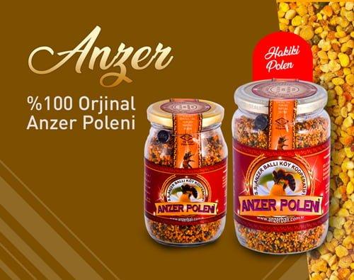 Anzer Bal polen