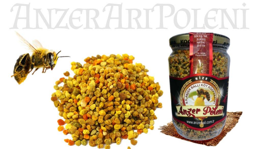 Anzer arı poleni sahip olduğu multiflora sebebiyle diğer polenlerden daha üstündür.